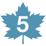Maple Leaf icon with number 5 - BLG Offices